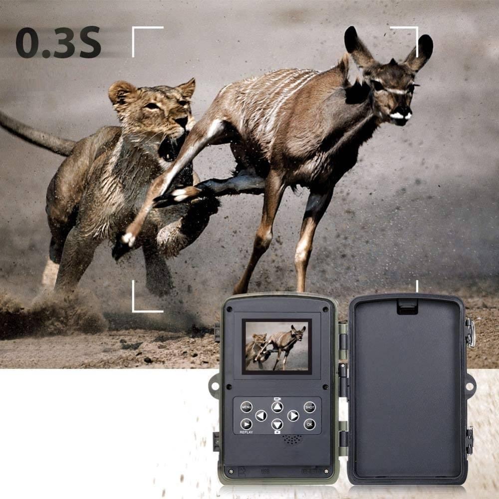 caméra de chasse led noir invisible