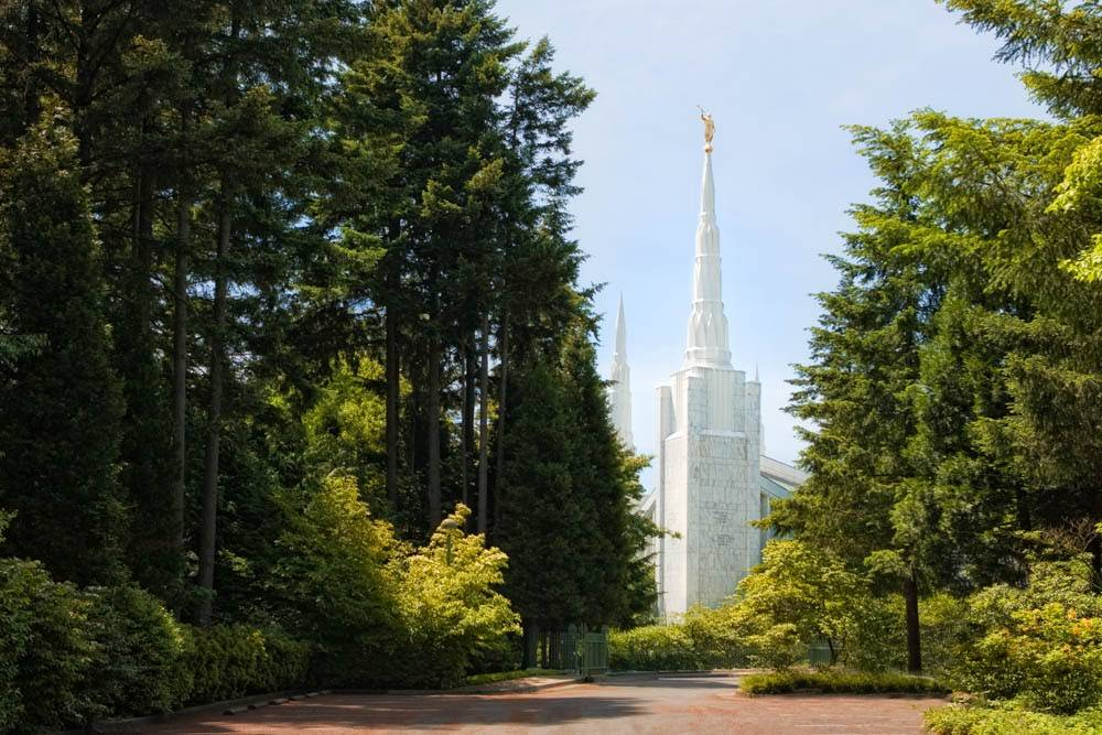 LDS art photo of the a forest path leading up to the Portland Oregon Temple .