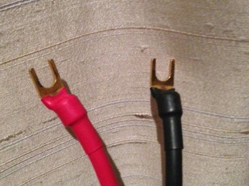 Purist Audio Design Venustas Speaker Cable 5.5 Meter