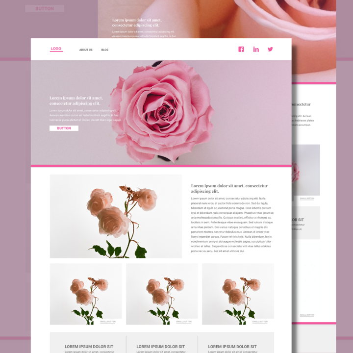 Rose template's featured image