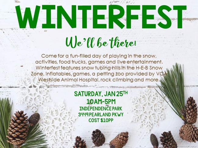 winterfest Primrose