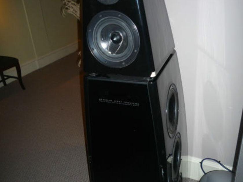 Meridian DSP8000 Single Speaker