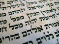 Up Close & Personal with Rabbi Kalev & A Torah