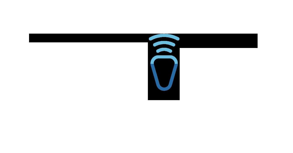 AigleVoir Logo