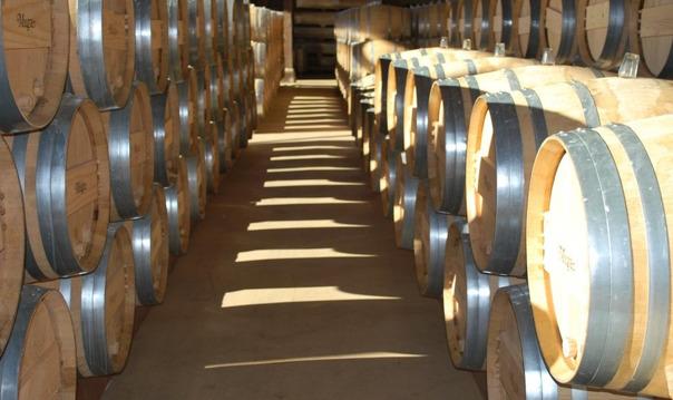 Дегустация вина в Ла Риоха