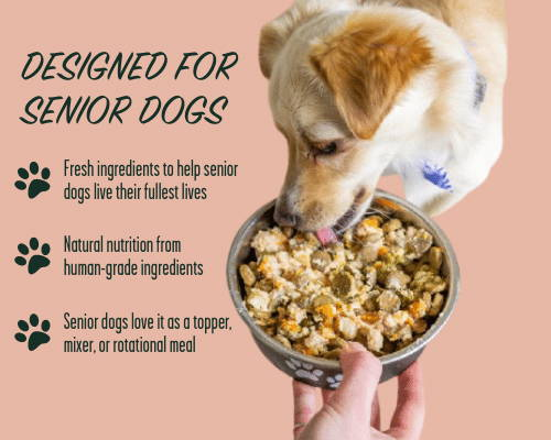 Three reasons why Portland Pet Food Company is the perfect dog food topper for senior dogs.