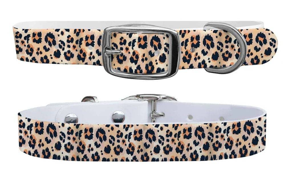 Leopard c4 dog collar