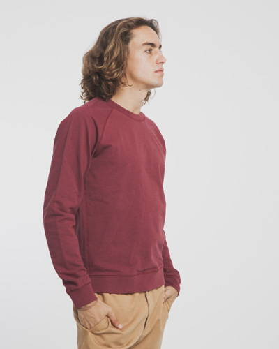 Man wearing burgundy organic cotton sweatshirt with brown chinos
