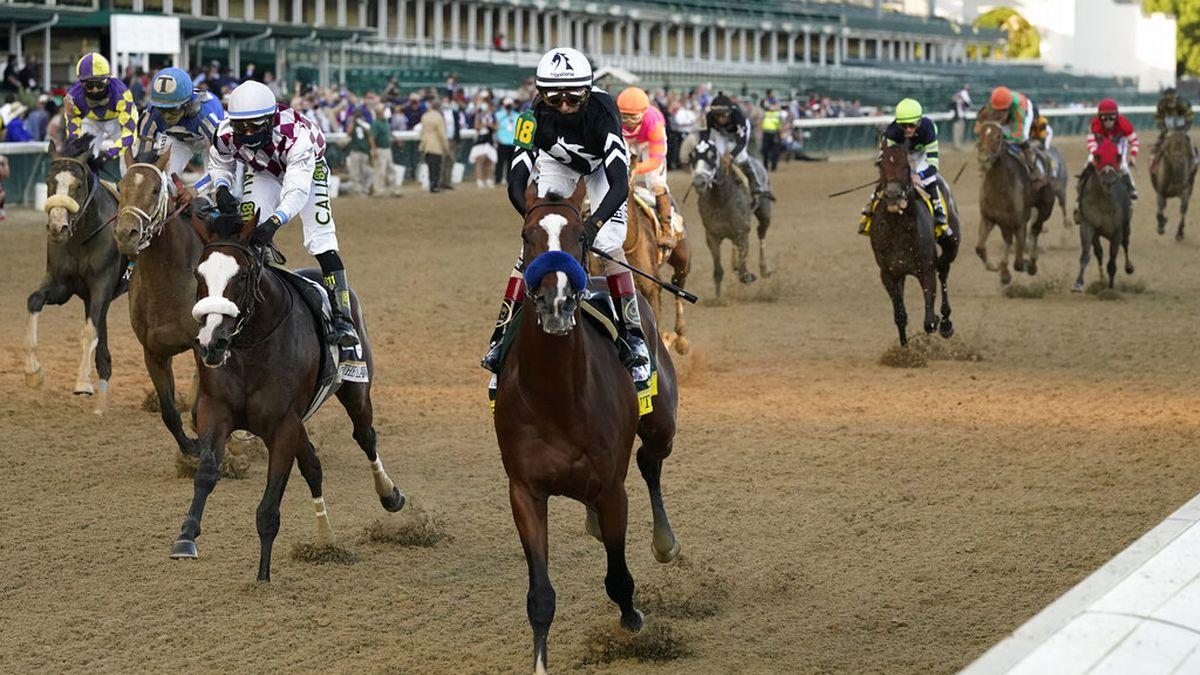 kentucky derby race odds