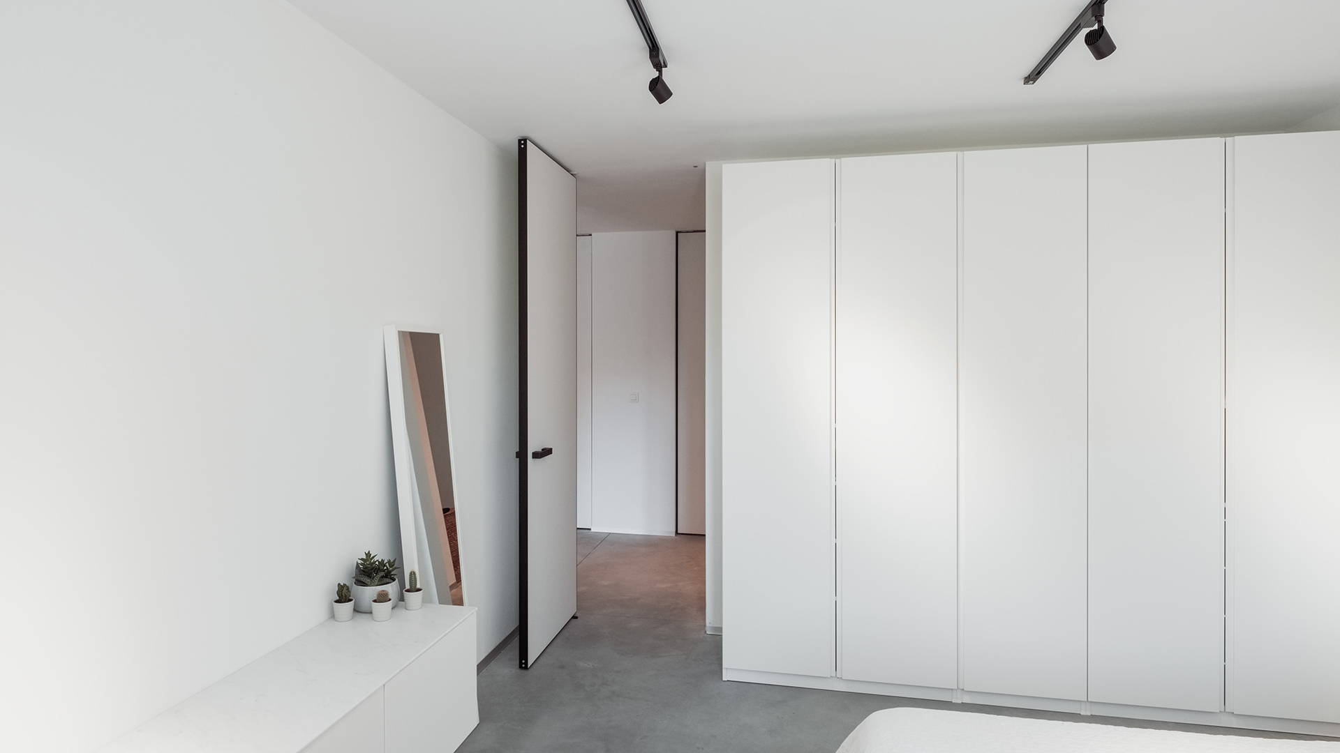 modern pivot door frameless