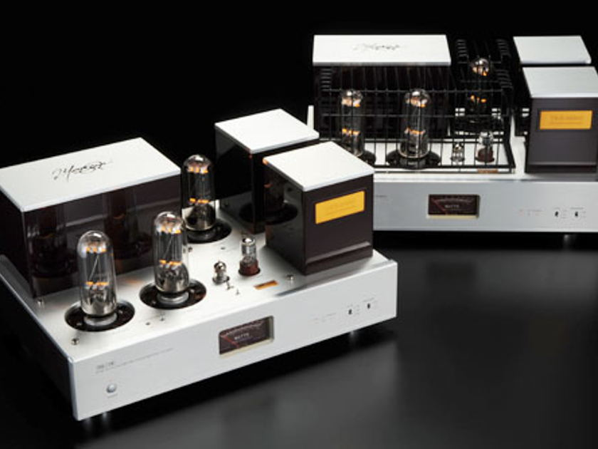 Triode Corporation TRX-M845 845 A class parallel single ended monaural power amplifiers