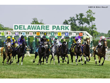Day at the Races for 6 at Delaware Park Racetrack
