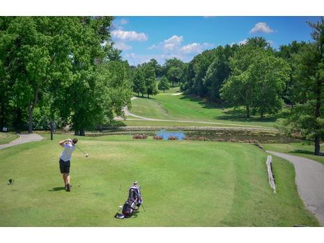 Golfer's Delight