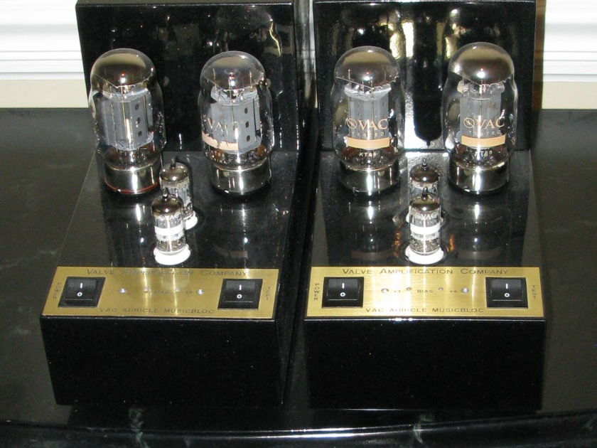 VAC Auricle MusicBloc 70 Monoblocks -- FREE SHIPPING --  Pair (2 Amps) -- L@@K