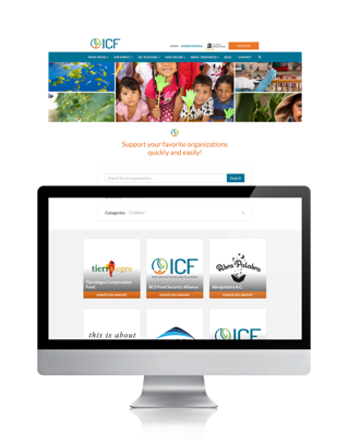 International Community Foundation site