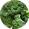 fastblast daily essentials contains organic kale