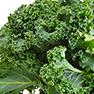 fastblast daily essentials contains organic kale
