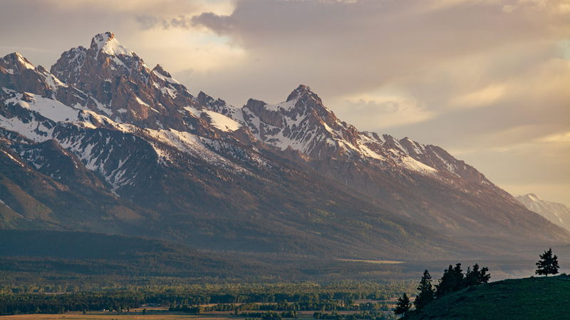 IOHK brings Plutus to Wyoming's hackathon