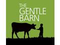 5 Gentle Barn Passes + Swag