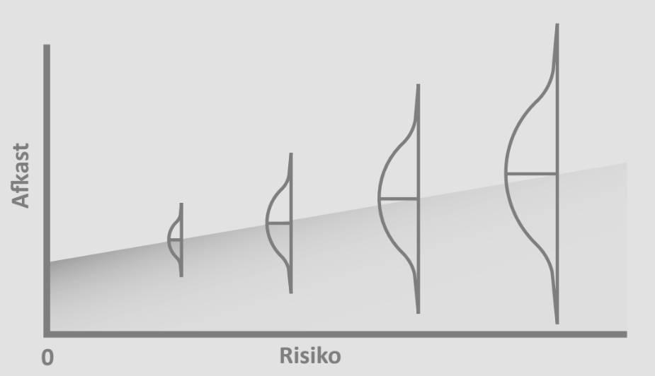 En figur, som viser at risiko og afkast følges ad - også når det kommer til investering i børsnoteringer