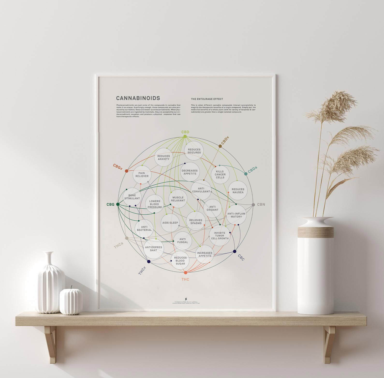 Cannabinoid Benefit Chart Diagram by Goldleaf