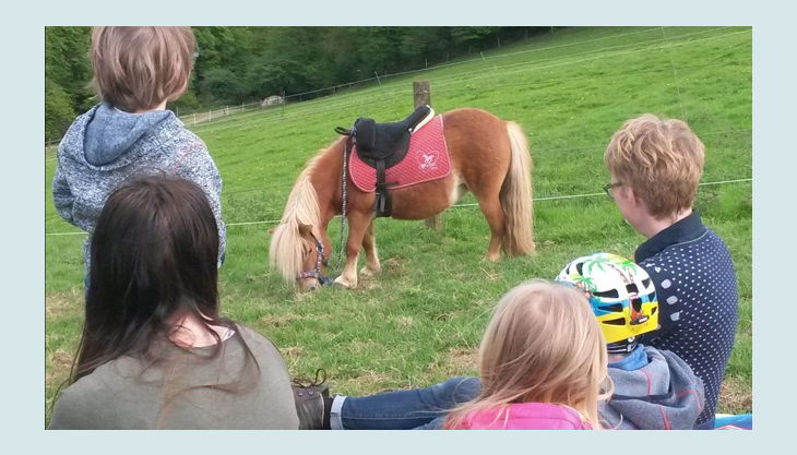 ponyhof sonnenschein picknick mit pony