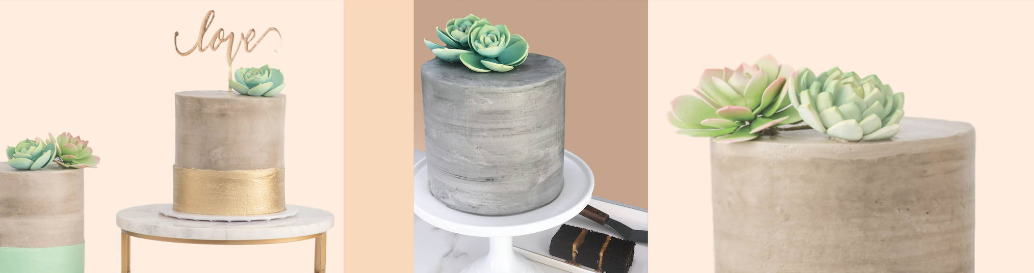 Succulent Custom Cakes and Cupcakes