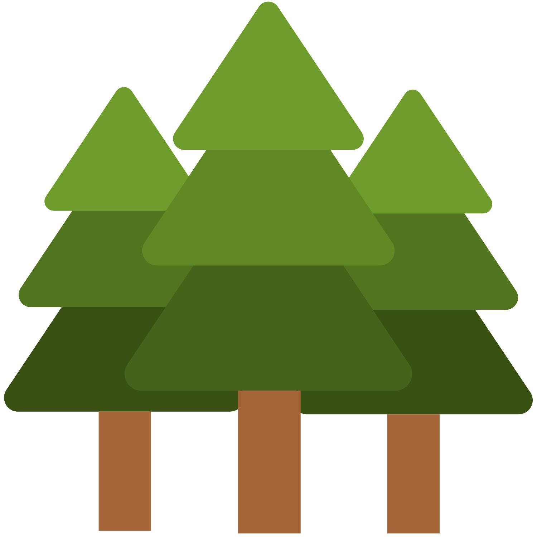Cartoon illustration of three pine trees.