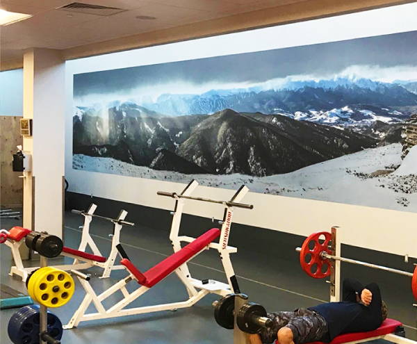 Interior Vinyl Wall Wrap -  Gym Mountains Wall Wrap