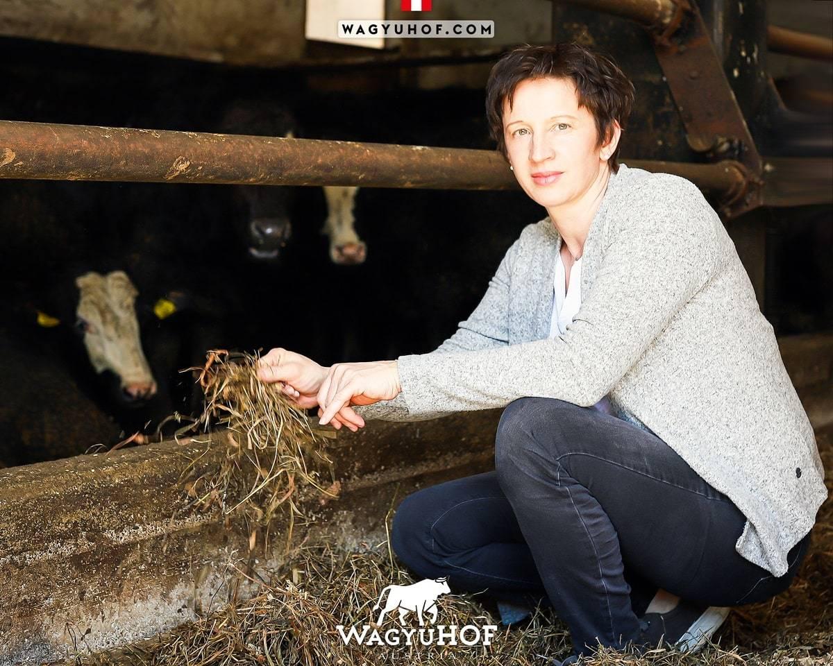 Renate Stöffelbauer beim Füttern der Wagyu-Rinder