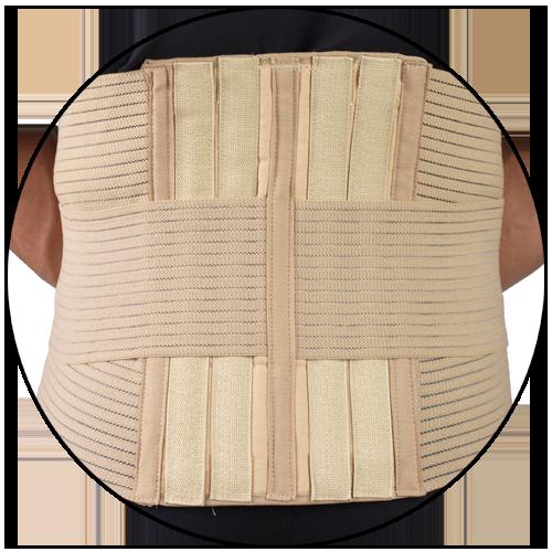 back pane