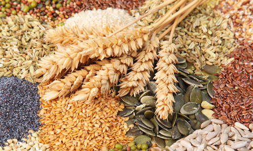 Phytic Acid Present in some cereal, seeds of fruit and legumes, nuts. In higher