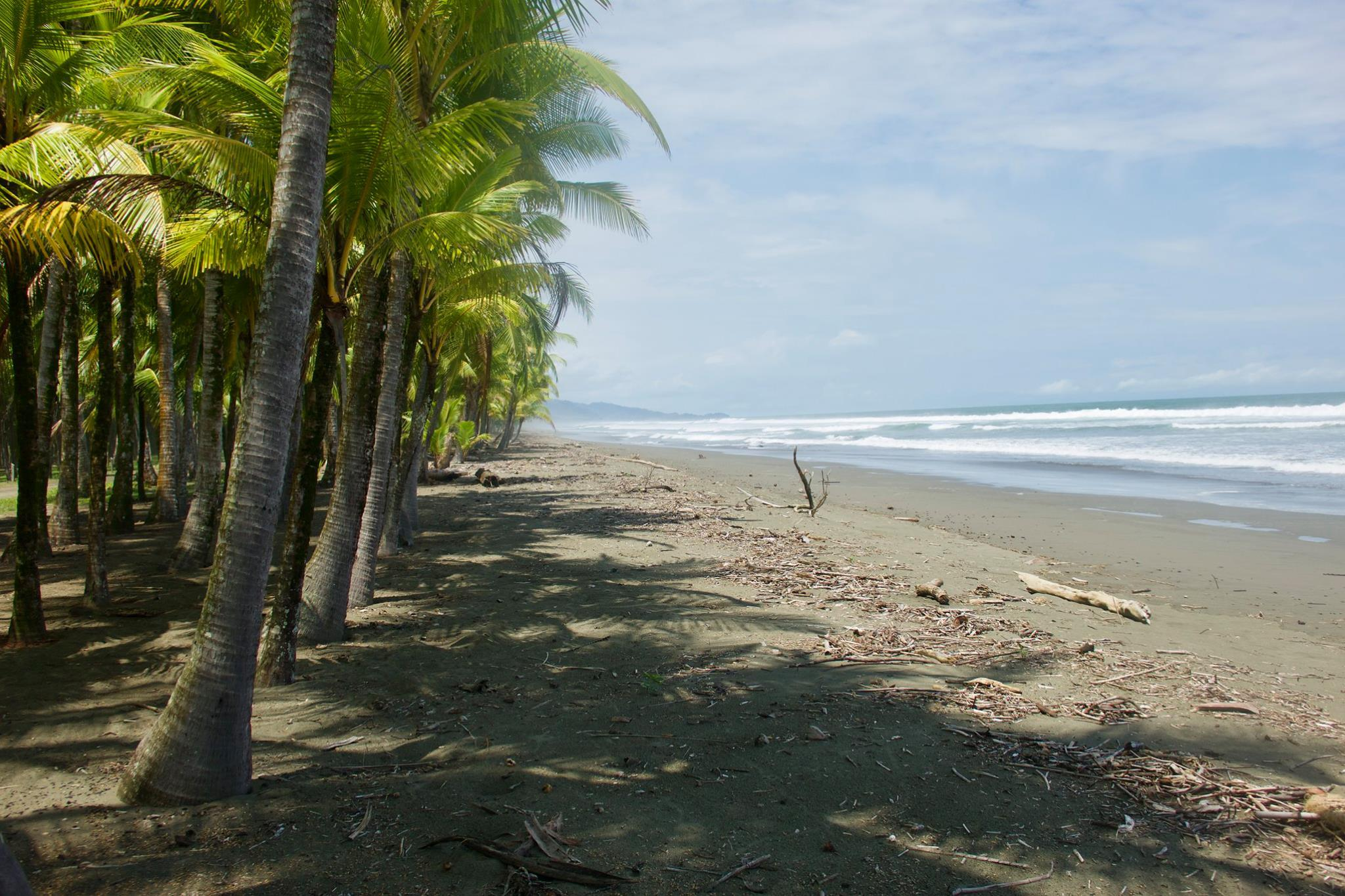 Picture of secluded beach near Quepos, Costa Rica