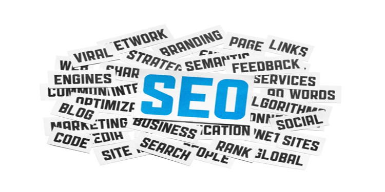 How can SEO contribute to your bottom line?