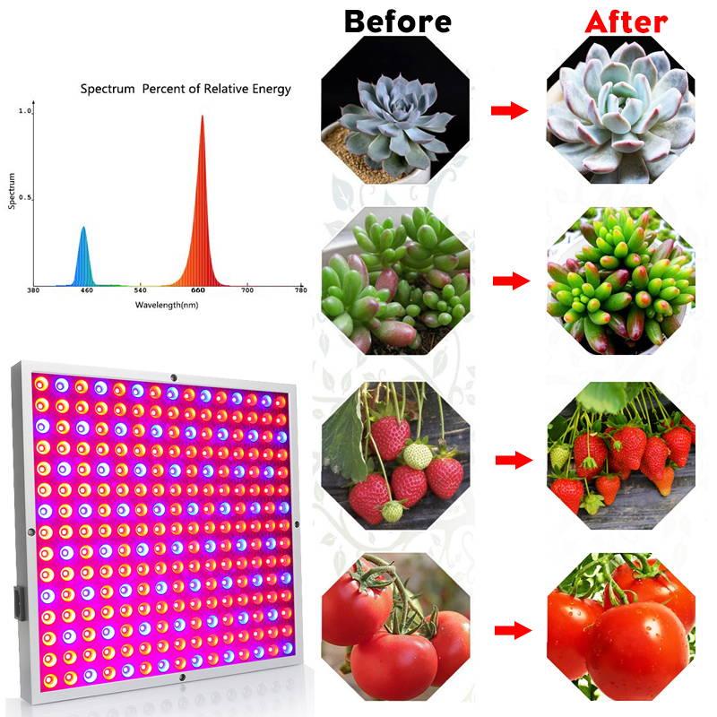 Grow Lights for Plants | LED Plant Grow Lights | Planting Lights | Indoor Plants Grow Lights | Full Spectrum Plant Grow Lights | Indoor plant lights | Best Grow Lights
