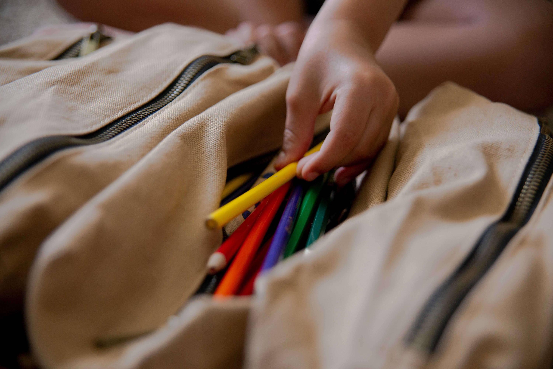 Tool Organizer Bag, Roll Up tool bag, Canvas Tool Roll