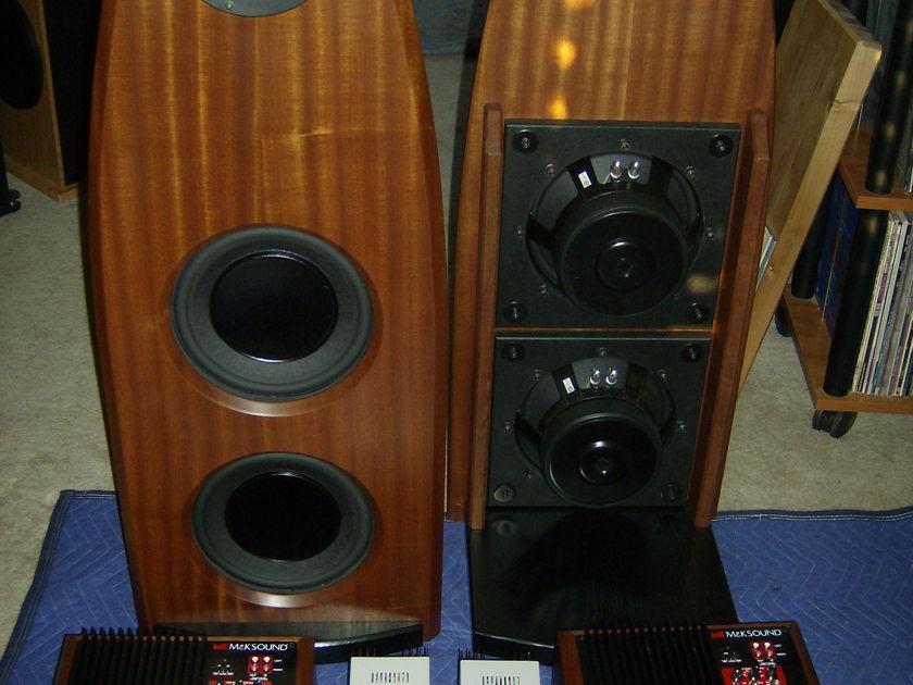Feastrex NF5EX Field Coil Open Baffle Speakers