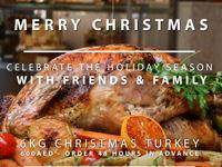 CHRISTMAS TURKEY image
