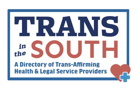 Trans In The South Logo and Link