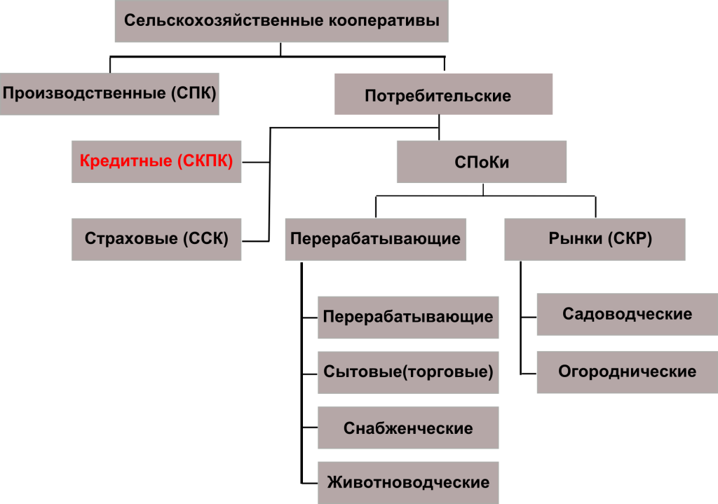 Схема. Система сельскохозяйственных кооперативов вРоссии