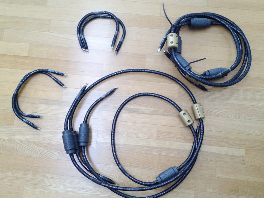 Virtual Dynamics Genesis 1.1 8ft Speaker Cables  + jumpers