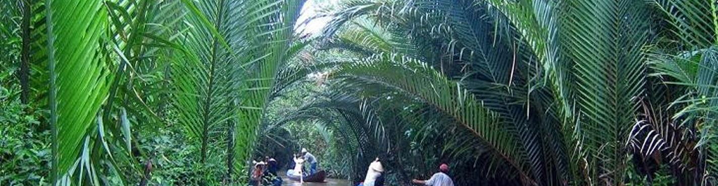 Экскурсия в Митхо — дельта реки Меконг