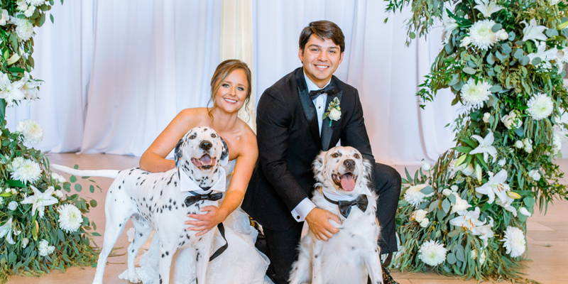 Furry Ring Bearers That Also Played Matchmaker