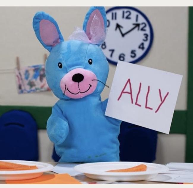 Happy Birthday Ally the Bunny
