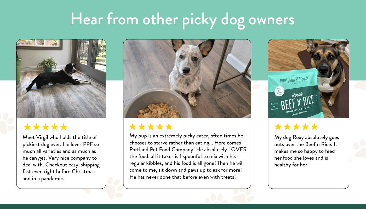 A sampling of five star reviews from picky dogs who love Portland Pet Food Company's wet dog food.