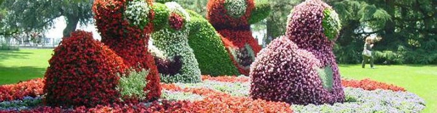 Остров цветов Майнау, Боденское озеро, Меерсбург