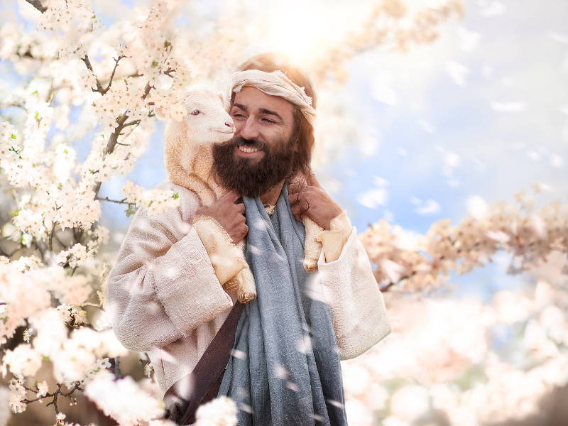 Jesus with a lamb on his shoulders and standing amid spring blossoms.