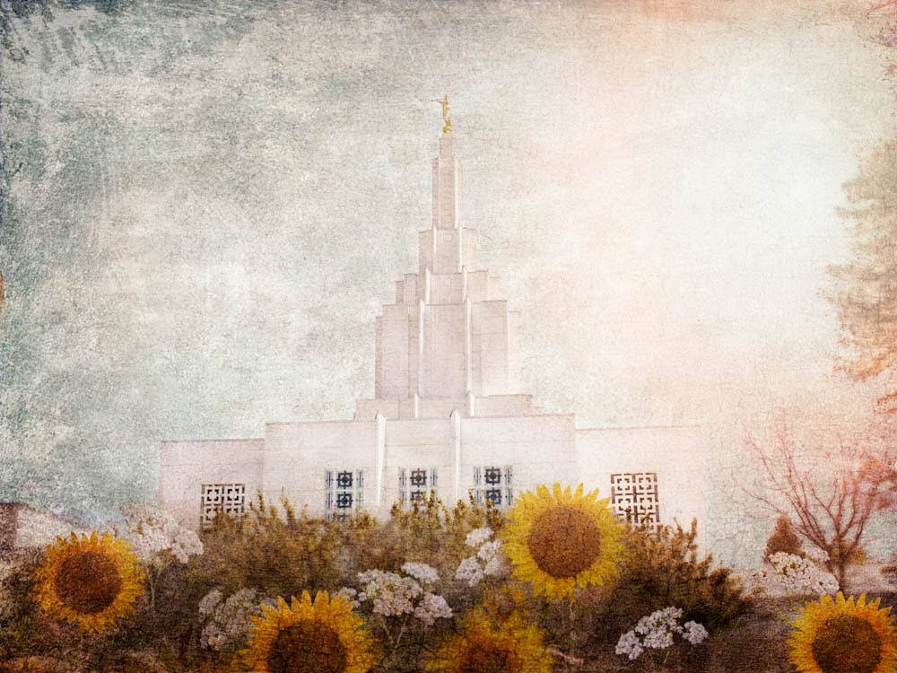 The Idaho Falls LDS Temple with a textured overlay. Sunflowers bloom in the foreground.