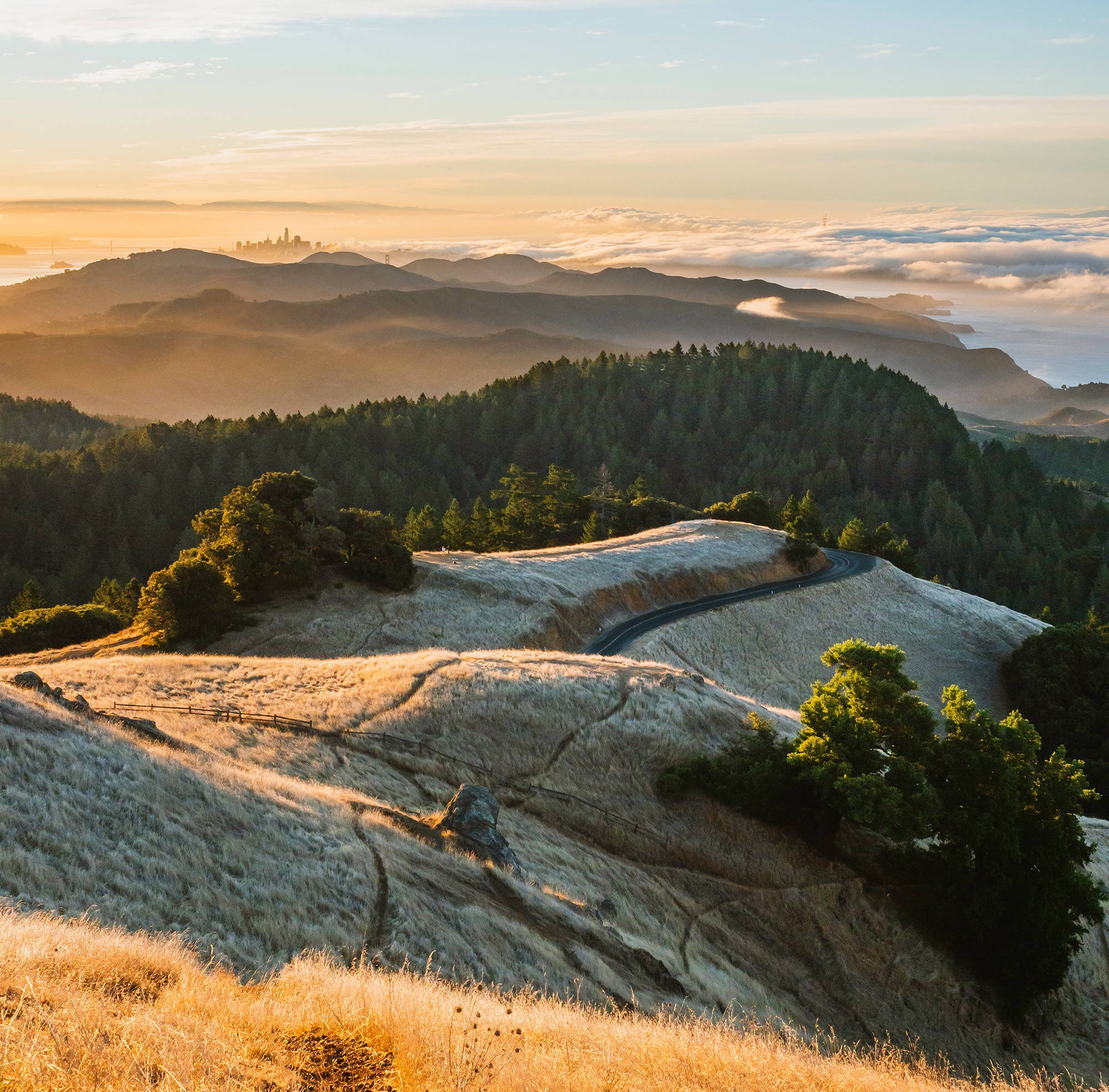 The rolling hills along the summit of Mt. Tamalpais looking south to San Francisco during sunset