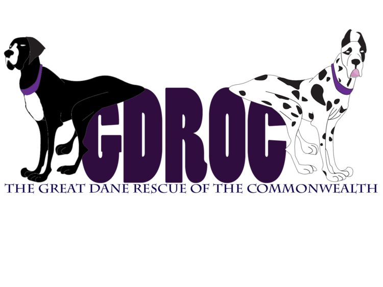 logo for our partner Great Dane Rescue of the Commonwealth